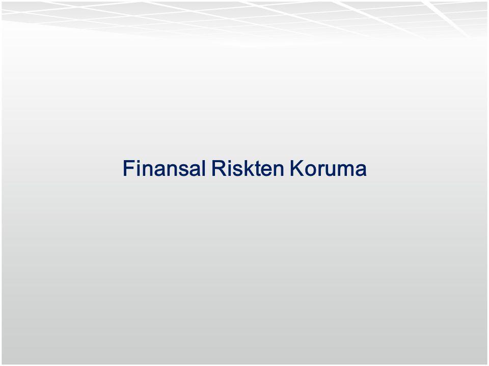 Finansal Riskten Koruma
