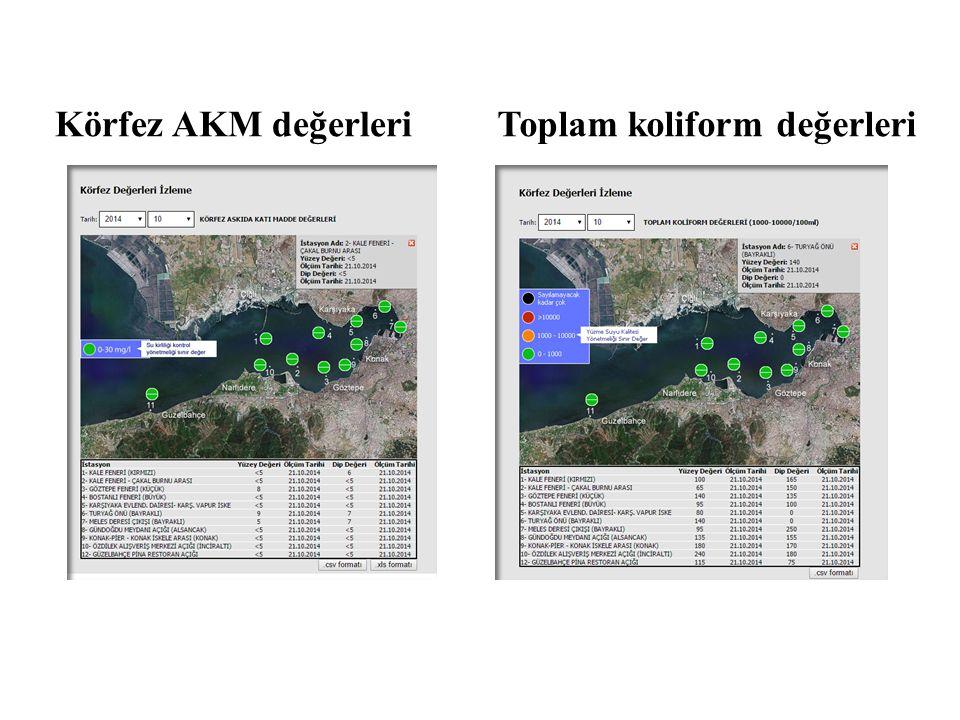 Körfez AKM değerleri Toplam koliform değerleri