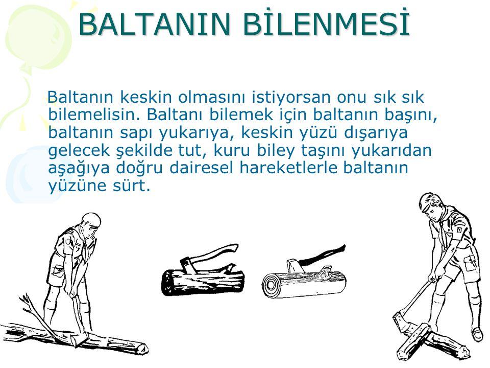 BALTANIN BİLENMESİ