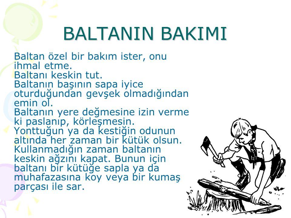 BALTANIN BAKIMI