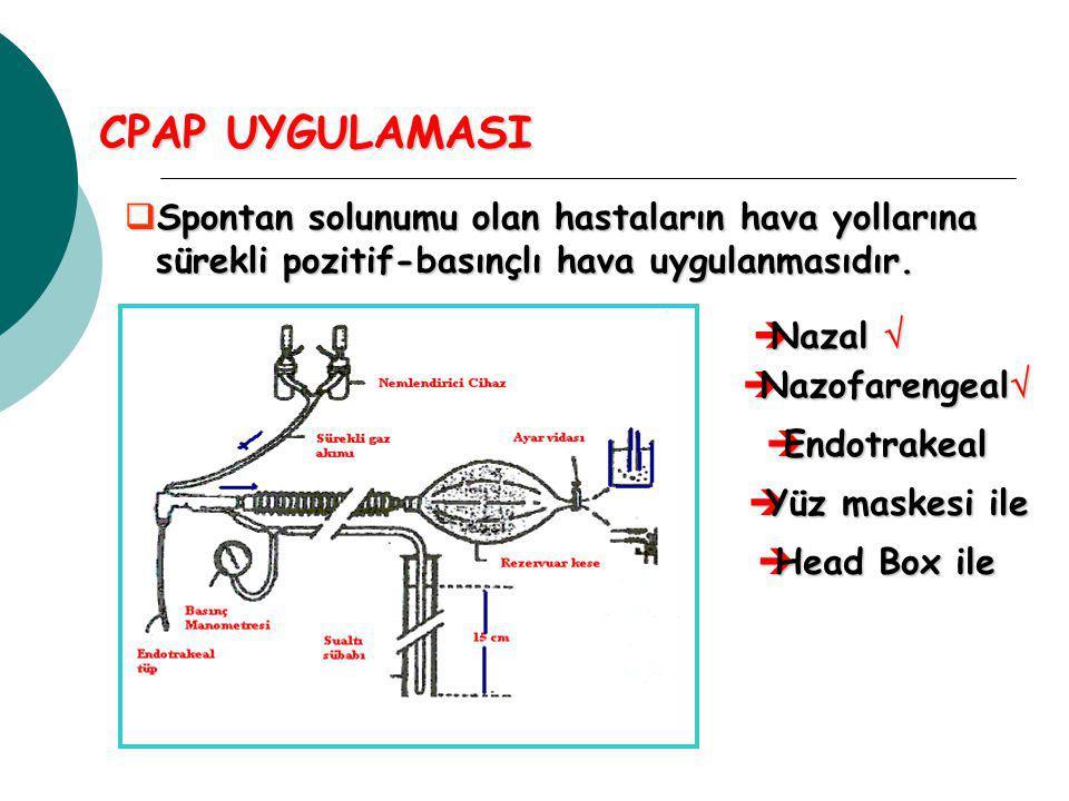 CPAP UYGULAMASI Spontan solunumu olan hastaların hava yollarına