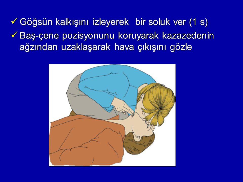 Göğsün kalkışını izleyerek bir soluk ver (1 s)