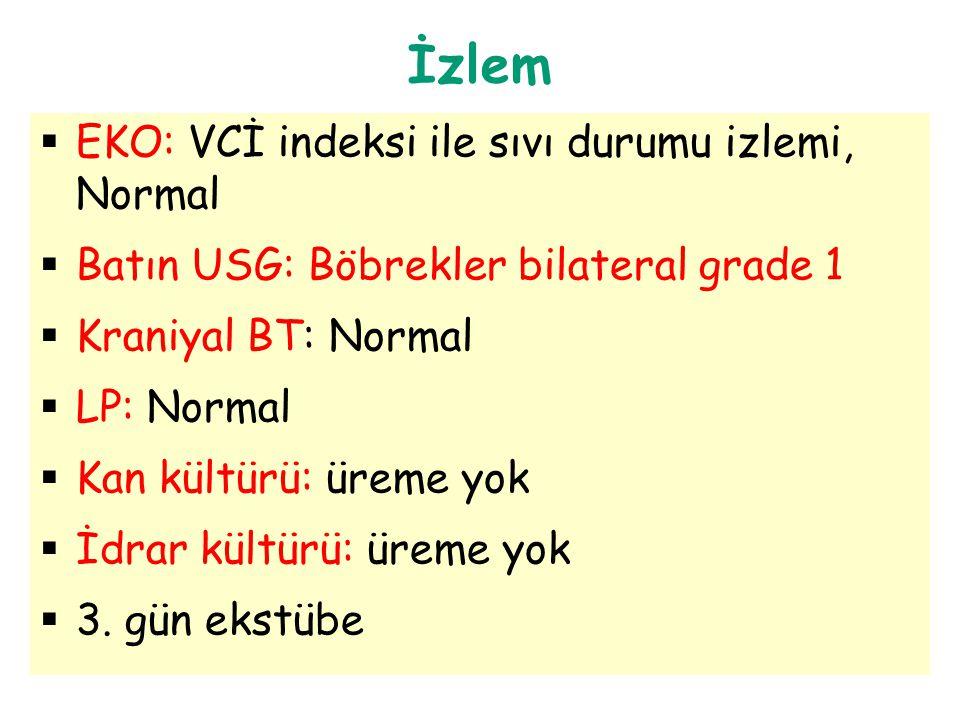 İzlem EKO: VCİ indeksi ile sıvı durumu izlemi, Normal
