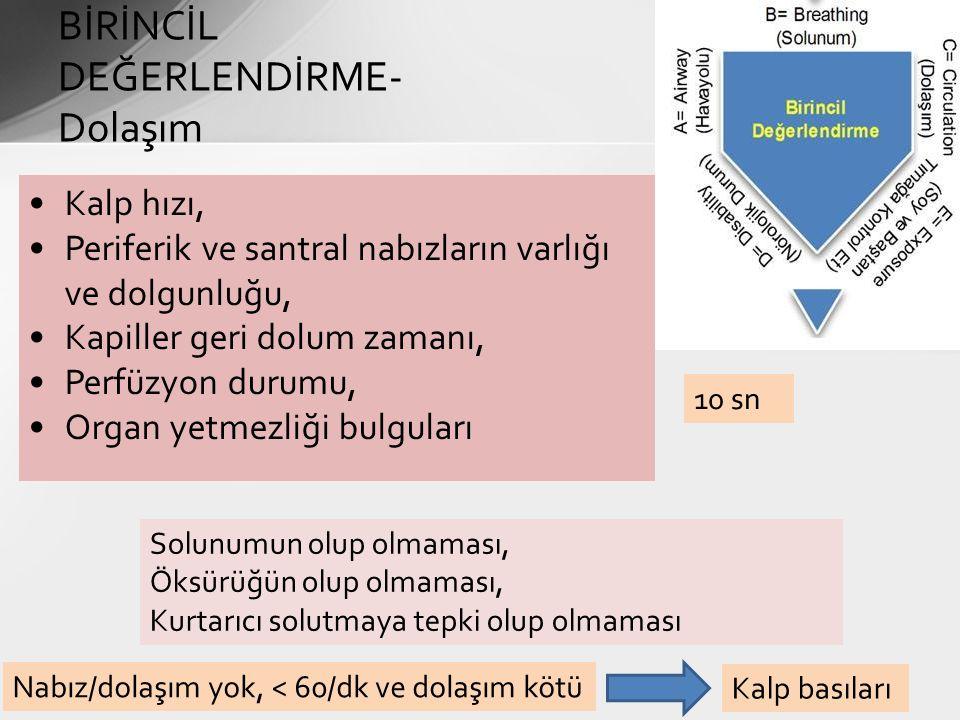 BİRİNCİL DEĞERLENDİRME-Dolaşım