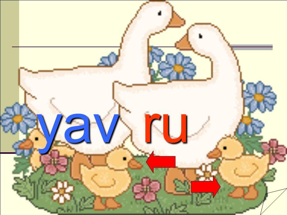 yav ru