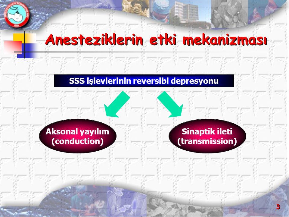 Anesteziklerin etki mekanizması