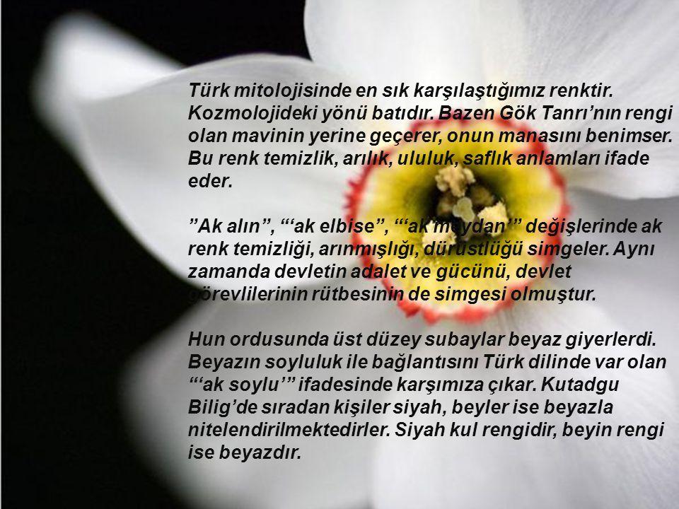 Türk mitolojisinde en sık karşılaştığımız renktir