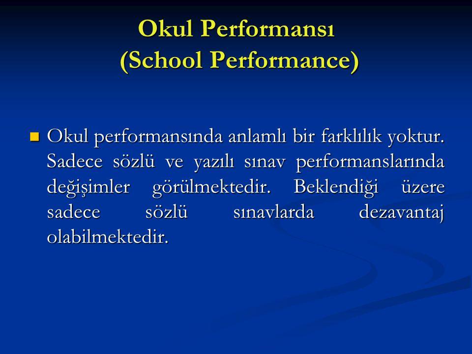 Okul Performansı (School Performance)