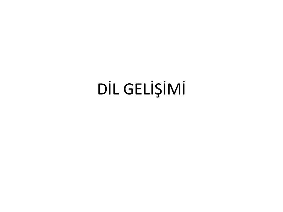 DİL GELİŞİMİ