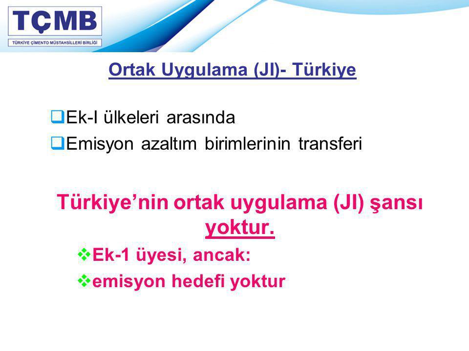 Ortak Uygulama (JI)- Türkiye