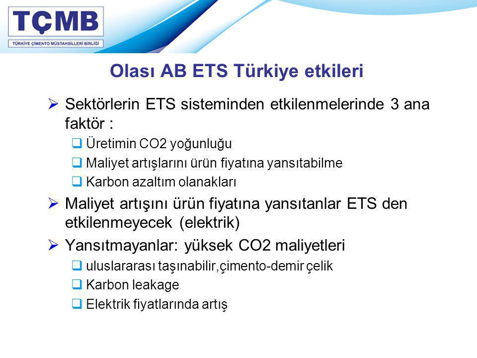 Olası AB ETS Türkiye etkileri