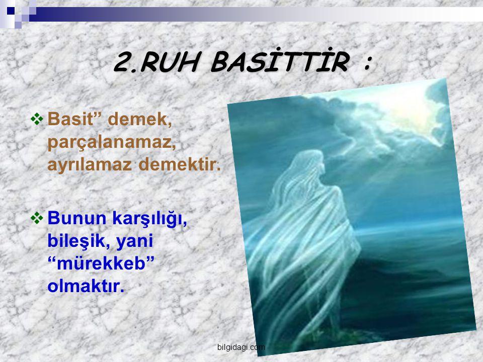 2.RUH BASİTTİR : Basit demek, parçalanamaz, ayrılamaz demektir.