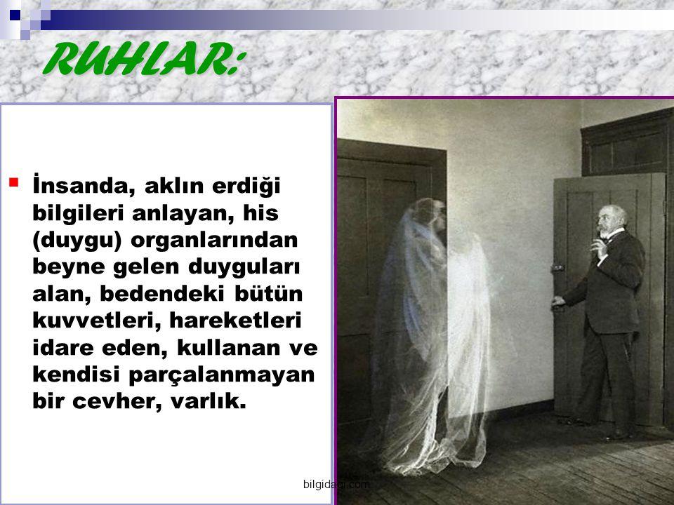 RUHLAR: