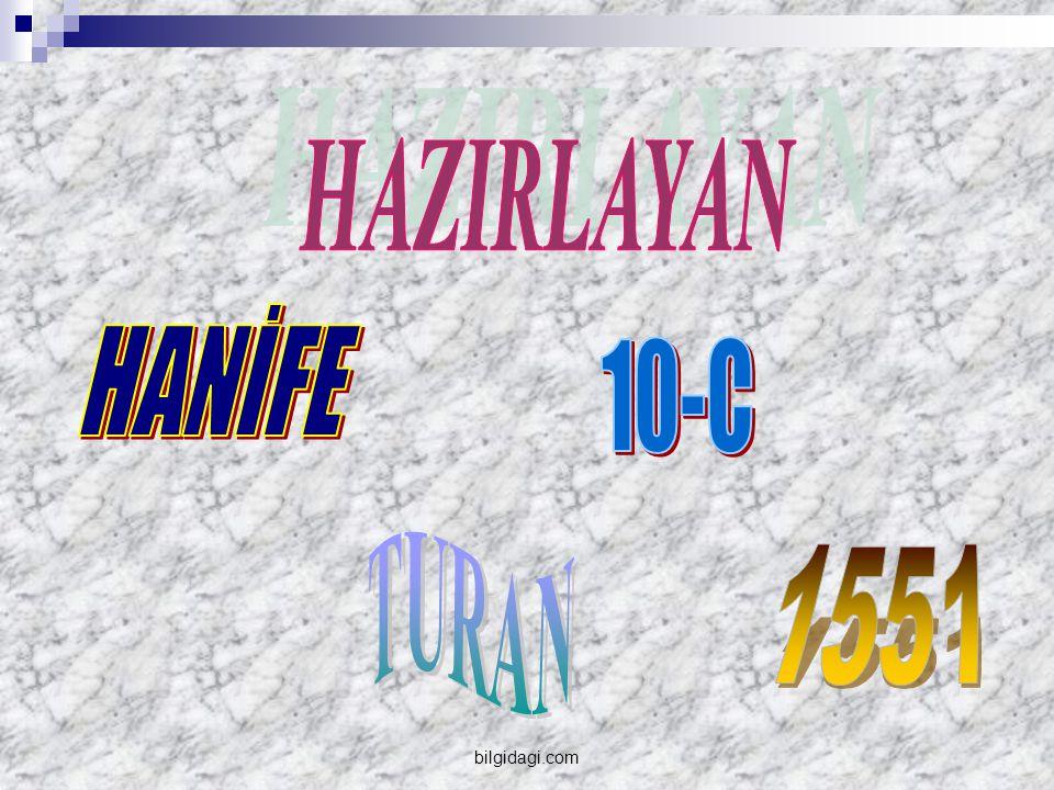 HAZIRLAYAN HANİFE 10-C TURAN 1551 bilgidagi.com
