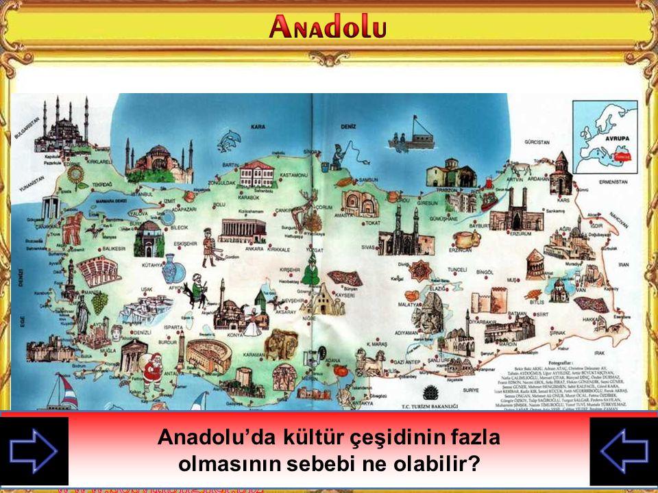 Anadolu'da kültür çeşidinin fazla olmasının sebebi ne olabilir