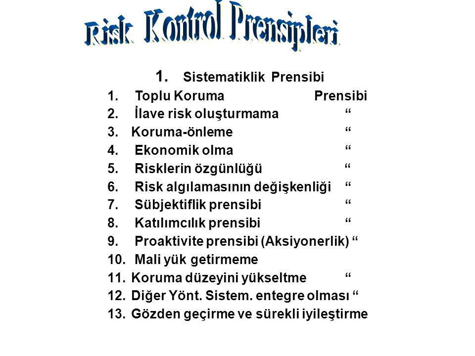 Risk Kontrol Prensipleri