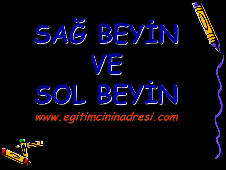 SAĞ BEYİN VE SOL BEYİN www.egitimcininadresi.com