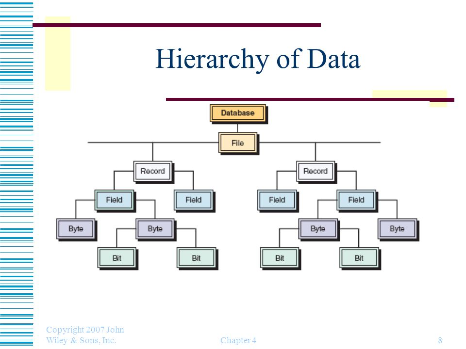 Hierarchy of Data Copyright 2007 John Wiley & Sons, Inc. Chapter 4