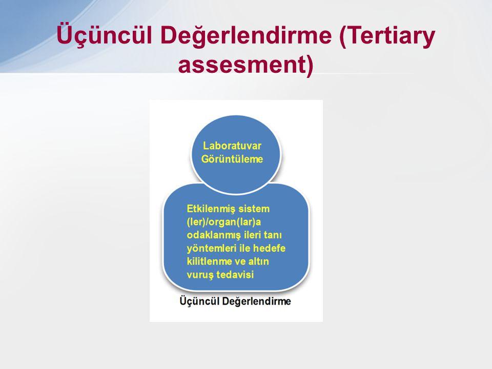 Üçüncül Değerlendirme (Tertiary assesment)
