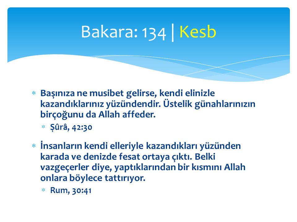 Bakara: 134 | Kesb Başınıza ne musibet gelirse, kendi elinizle kazandıklarınız yüzündendir. Üstelik günahlarınızın birçoğunu da Allah affeder.