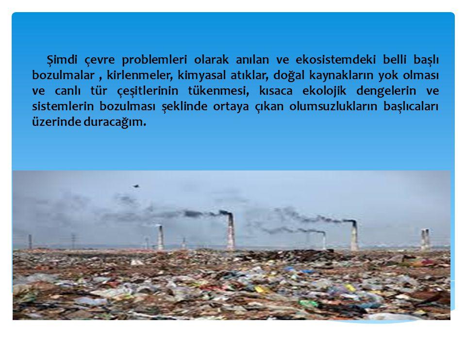 Şimdi çevre problemleri olarak anılan ve ekosistemdeki belli başlı bozulmalar , kirlenmeler, kimyasal atıklar, doğal kaynakların yok olması ve canlı tür çeşitlerinin tükenmesi, kısaca ekolojik dengelerin ve sistemlerin bozulması şeklinde ortaya çıkan olumsuzlukların başlıcaları üzerinde duracağım.