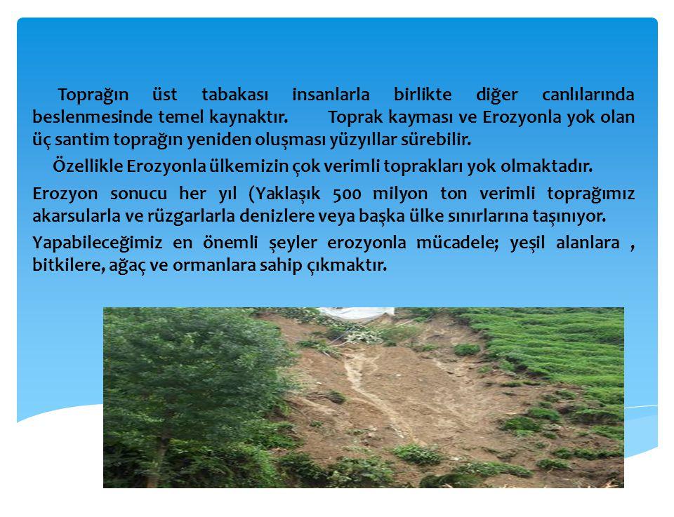 Toprağın üst tabakası insanlarla birlikte diğer canlılarında beslenmesinde temel kaynaktır. Toprak kayması ve Erozyonla yok olan üç santim toprağın yeniden oluşması yüzyıllar sürebilir.