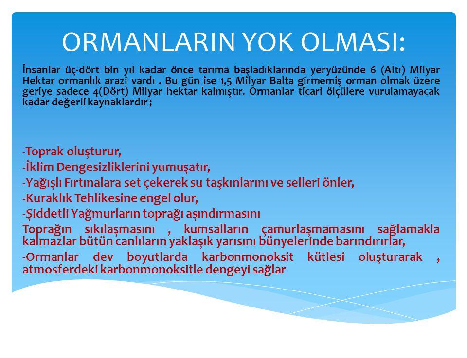 ORMANLARIN YOK OLMASI: