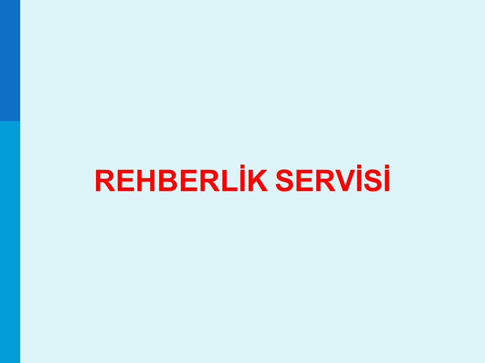 REHBERLİK SERVİSİ 60 60