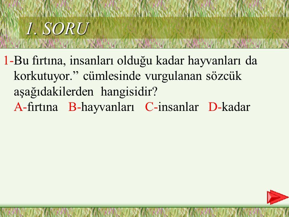 1. SORU