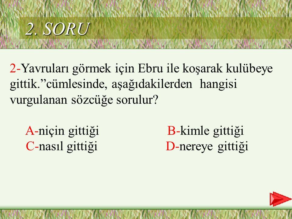 2. SORU 2-Yavruları görmek için Ebru ile koşarak kulübeye