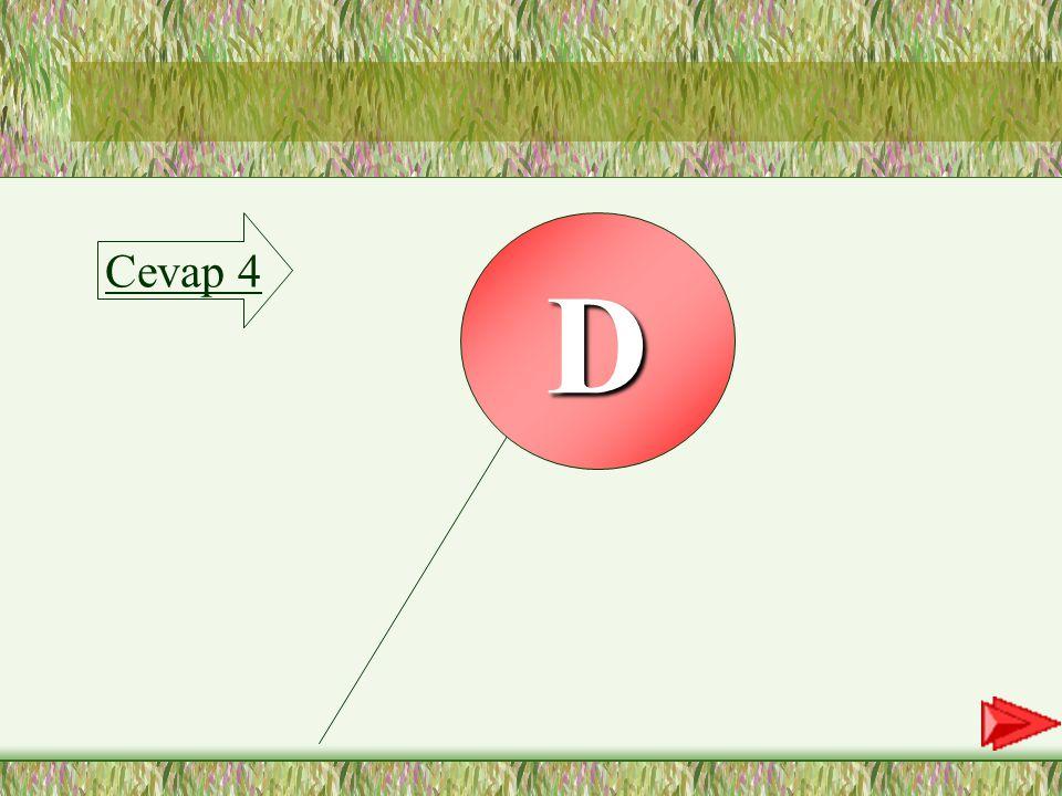 Cevap 4 D