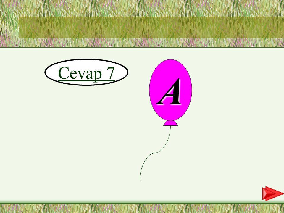 Cevap 7 A