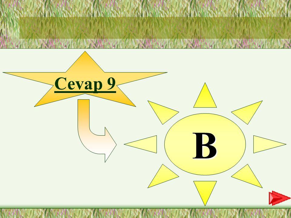 Cevap 9 B