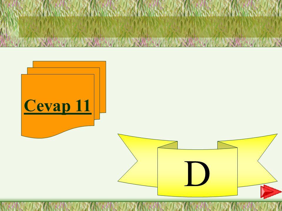 Cevap 11 D