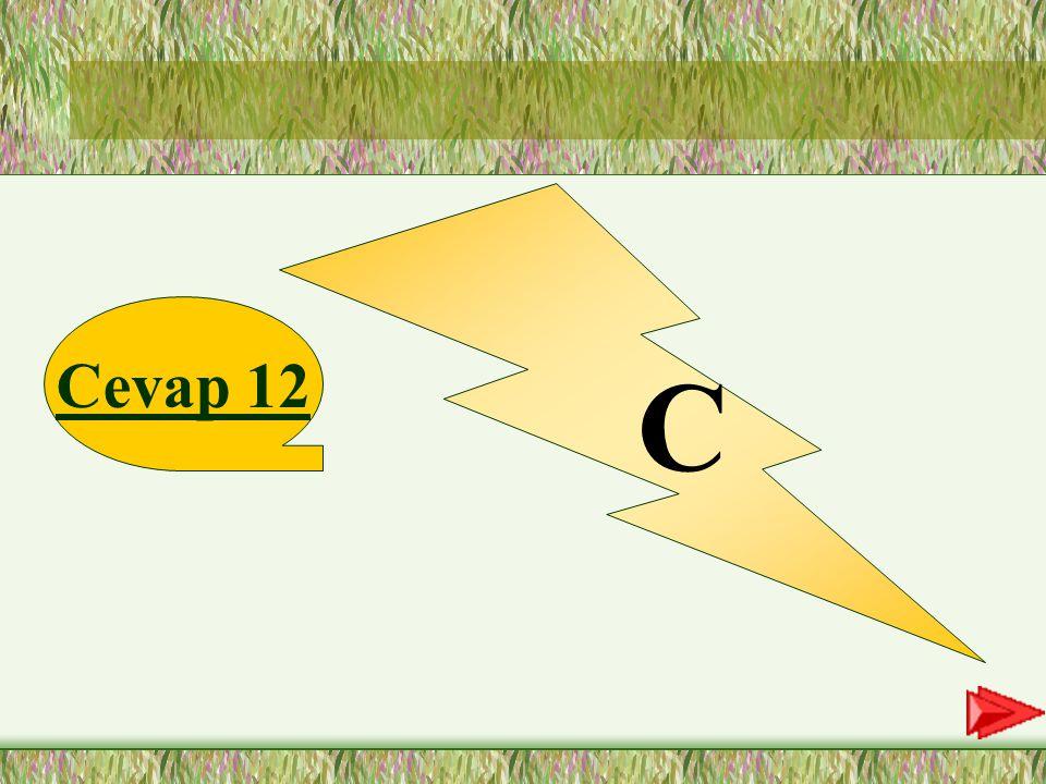 C Cevap 12