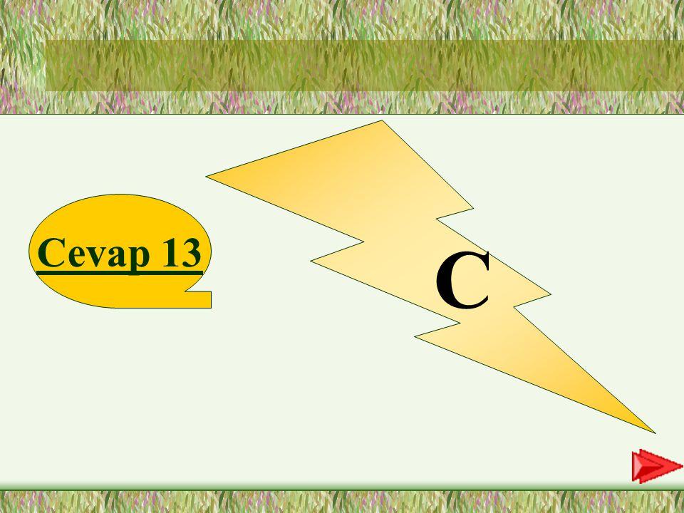 C Cevap 13