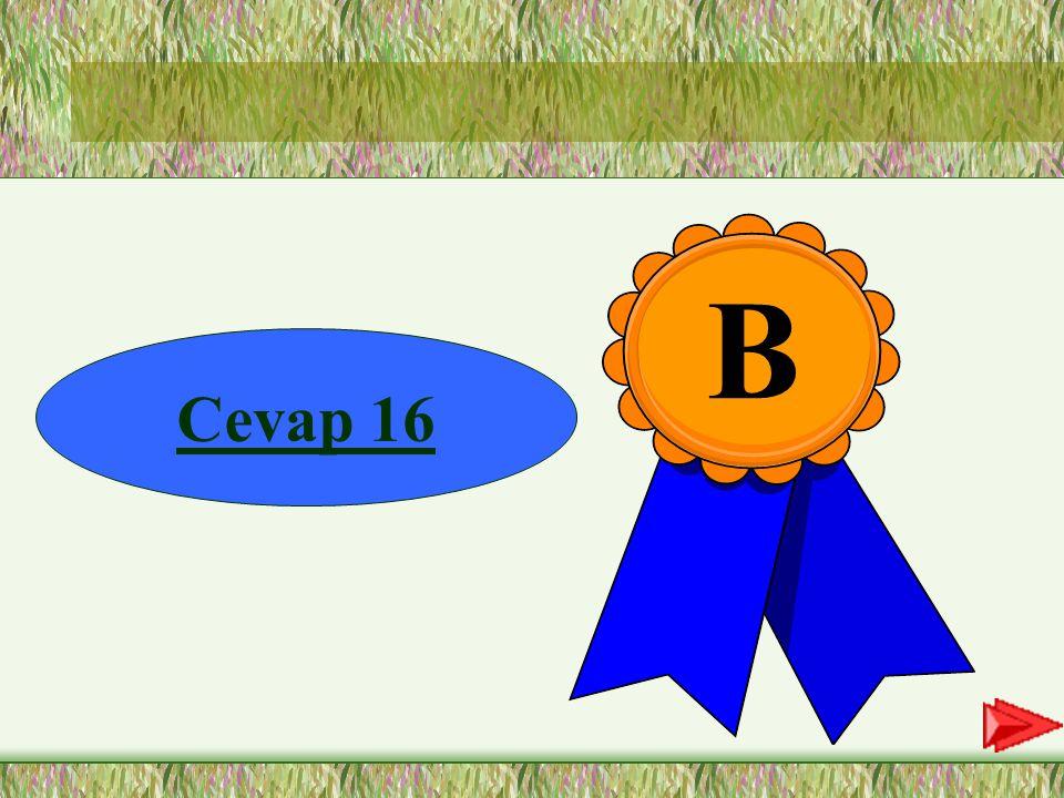 B Cevap 16
