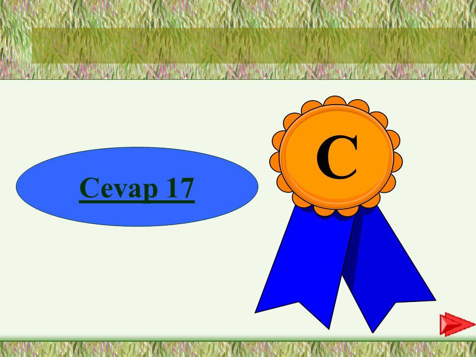 C Cevap 17