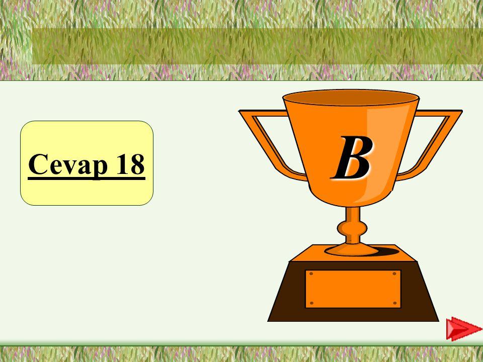 Cevap 18 B