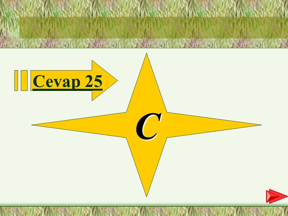 C Cevap 25