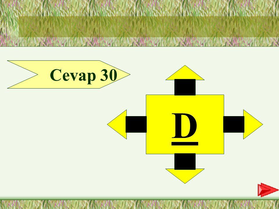 Cevap 30 D