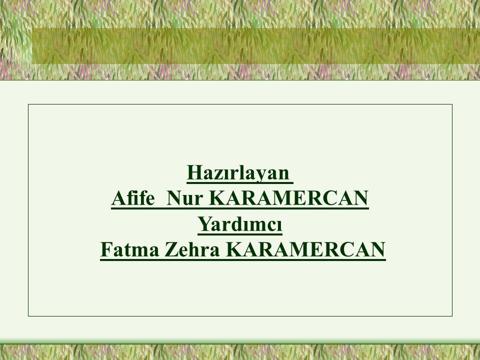 Fatma Zehra KARAMERCAN