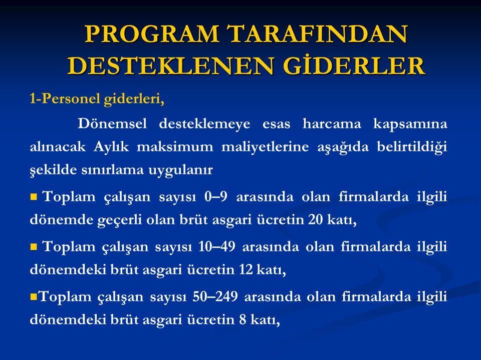 PROGRAM TARAFINDAN DESTEKLENEN GİDERLER