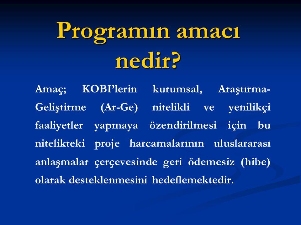 Programın amacı nedir