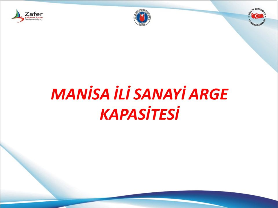MANİSA İLİ SANAYİ ARGE KAPASİTESİ