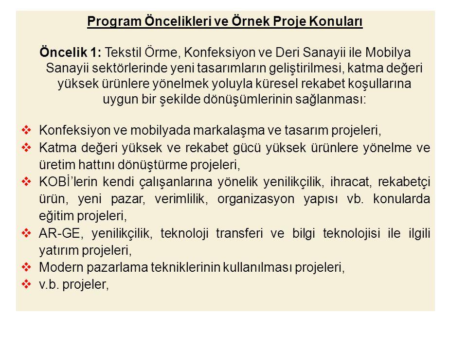 Program Öncelikleri ve Örnek Proje Konuları
