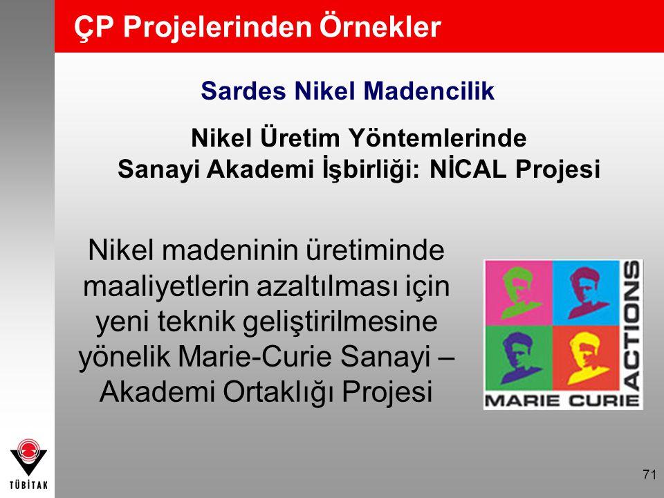 ÇP Projelerinden Örnekler