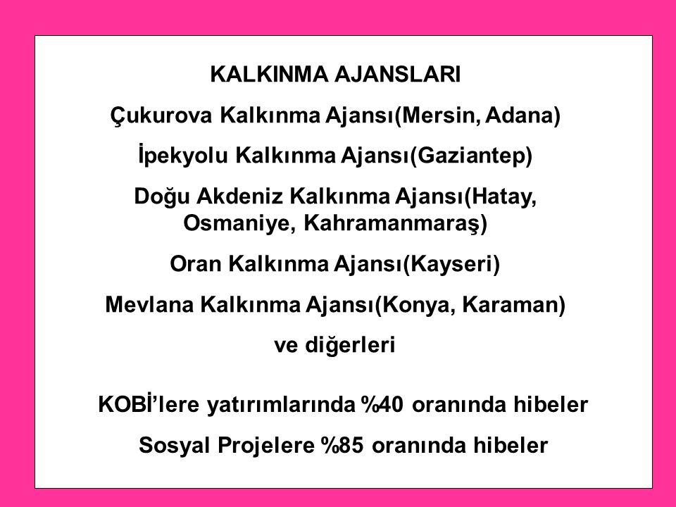 Çukurova Kalkınma Ajansı(Mersin, Adana)