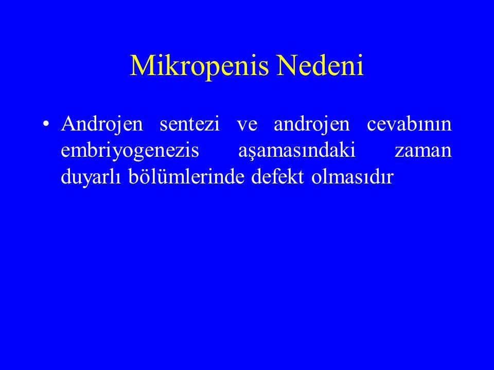 Mikropenis Nedeni Androjen sentezi ve androjen cevabının embriyogenezis aşamasındaki zaman duyarlı bölümlerinde defekt olmasıdır.