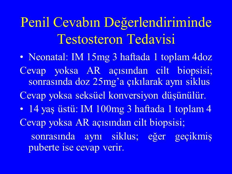 Penil Cevabın Değerlendiriminde Testosteron Tedavisi